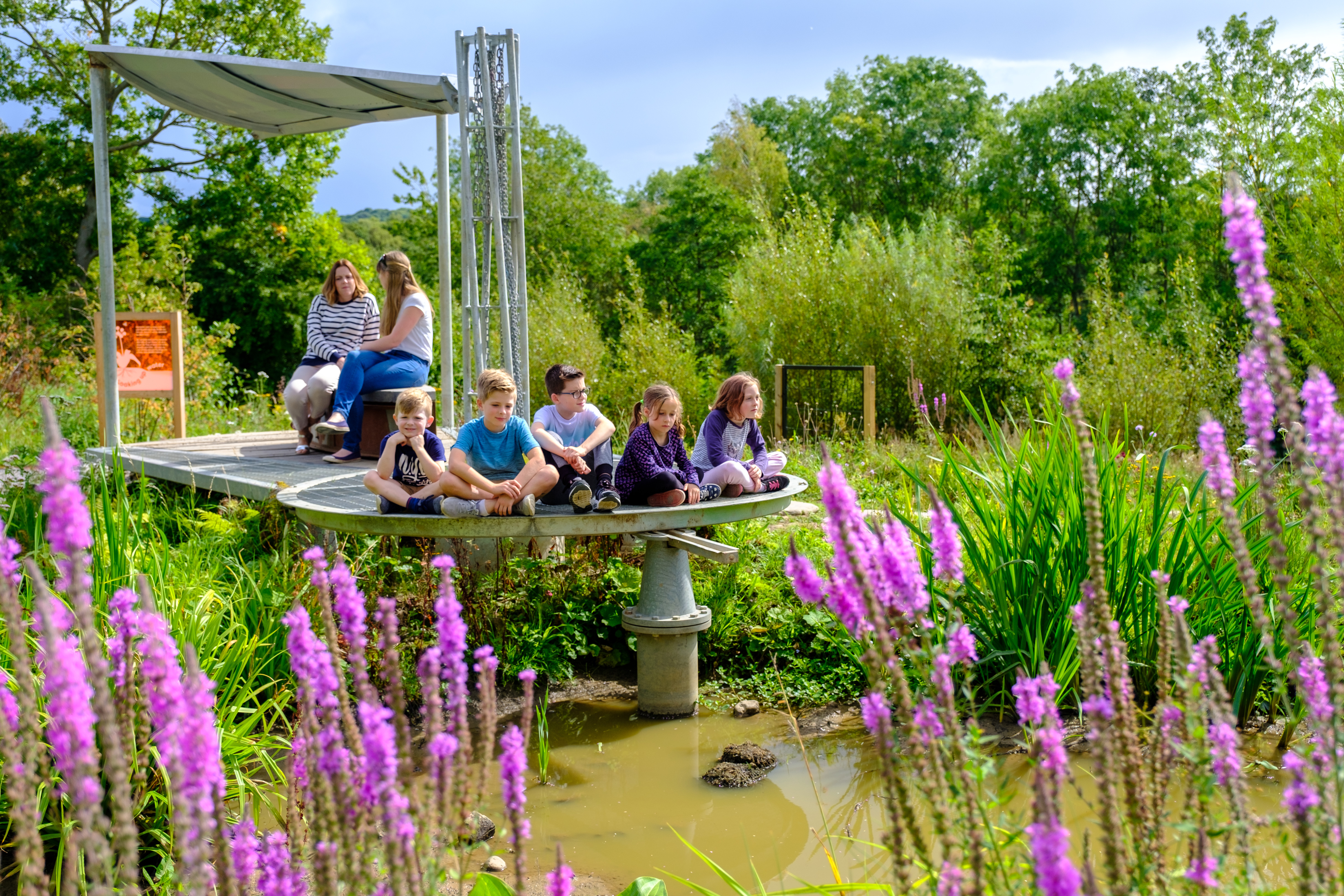 Working Wetland Garden with children and adults WWT